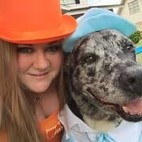 dog walker Katy