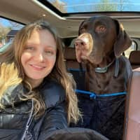 Katya's dog day care