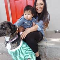 Marrisa's dog boarding