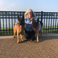 Best Dog Walkers In Frankfort Ky Rover Com