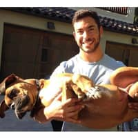 Kia's dog day care