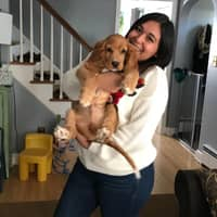 Karina's dog day care