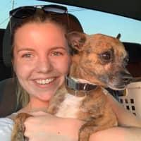 Allie P.'s profile image