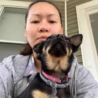 Miranda's dog boarding