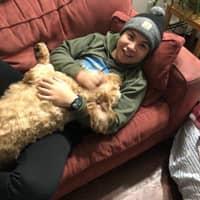 Jarret's dog day care