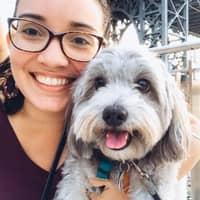 Kimberley Ann's dog boarding