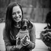 Mia's dog day care
