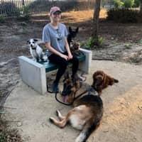 Anna Maria's dog day care