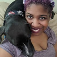 Krystal's dog day care