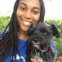 Shayla's dog boarding