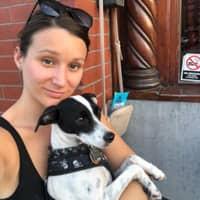 Christine & Henry's dog day care