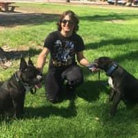 Giovanni's dog day care