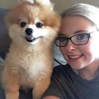 Allyson's dog boarding