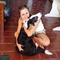Eugenia & Diego's dog boarding
