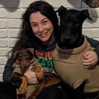 Korynn's dog day care