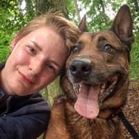 hondenopvang van Marenne