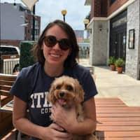 Melissa's dog boarding