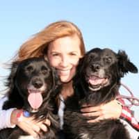 Lexa's dog day care