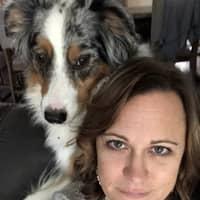 Diana's dog boarding