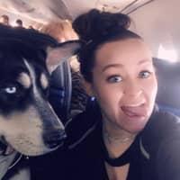 Jaleesa's dog boarding