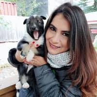 Gianina's dog day care