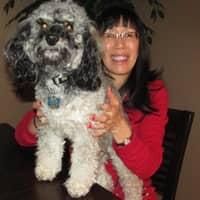 dog walker Lucinda