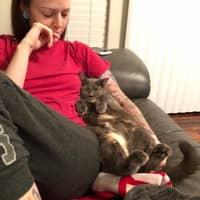 pet sitter Shay