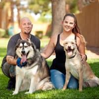 dog walker Jesse C. & Nicole