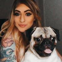 Arabella's dog day care