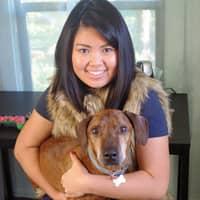 Janelle's dog boarding