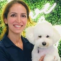 Nina's dog day care