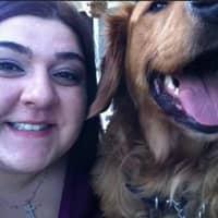 Kaliopi's dog day care