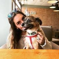 Alice D.'s profile image