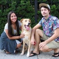 dog walker Melissa & Robert
