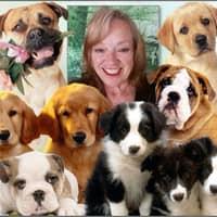 Janice's dog day care