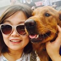 Miao & Sheng's dog boarding