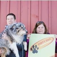 Andrea & Mark's dog boarding