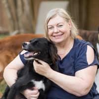 Cheryn's dog day care
