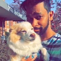 Raj's dog day care