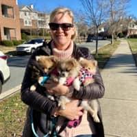 Meagan's dog day care