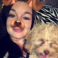 Kristiena's dog boarding