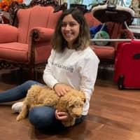 Fernanda's dog day care