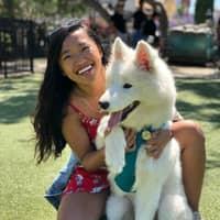 Jenny & Alexander's dog day care