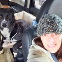 Ann S.'s profile image