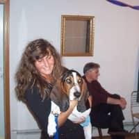 Deborah's dog day care