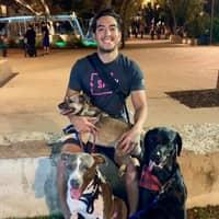 dog walker Jose