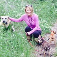 dog walker Laurie