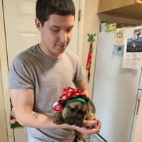 Gerardo's dog day care