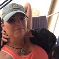 Cherie & David's dog day care