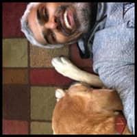 dog walker Mahmood